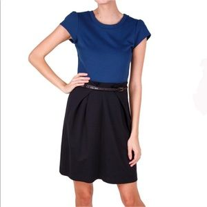 Theory Blue and Black Color block Pleated Dress